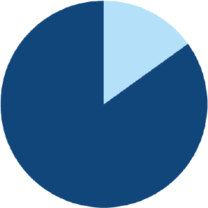 pie chart showing 85% of a circle